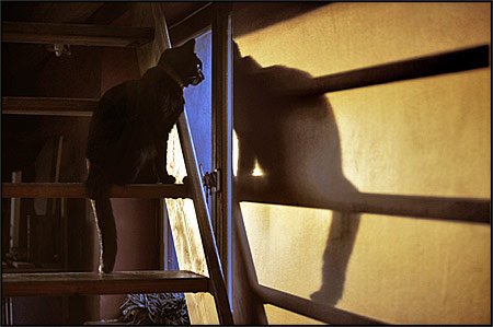 http://triturages.free.fr/blog/2010/07/kazhb.jpg