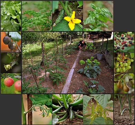 http://triturages.free.fr/blog/2010/08/liorzhb.jpg