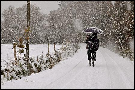 http://triturages.free.fr/blog/2010/12/ech_01b.jpg