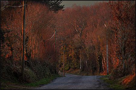 http://triturages.free.fr/blog/2011/02/straedb.jpg